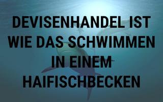 Was ist Devisenhandel? – Im Haifischbecken schwimmen lernen